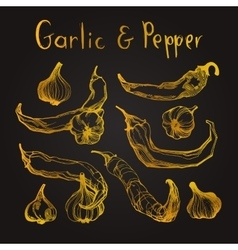 Garlic and pepper set vector image