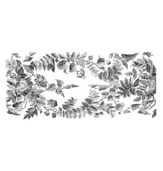 Ribbon is designed with floral wreaths of passion vector