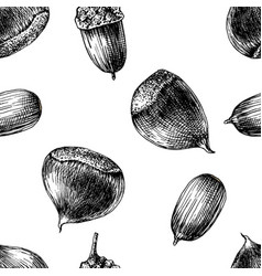 Seamless pattern with hand drawn chestnuts and vector