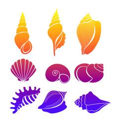 set seashells bright vector image
