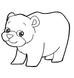 cartoon cute bear coloring page vector image