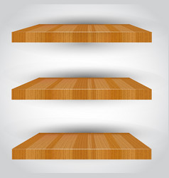 three-dimensional isolated empty shelf vector image