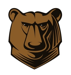 Big brown bear head vector image