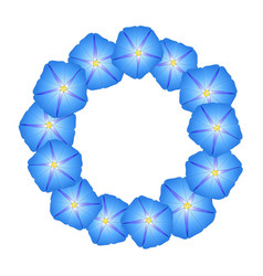 blue morning glory flower wreath vector image