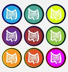 Intestines icon sign Nine multi colored round vector image