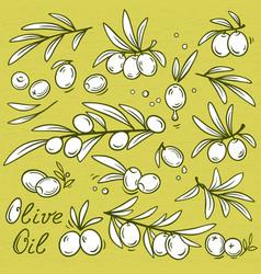 olives set vector image vector image