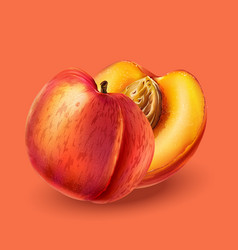 Peach on pink background vector