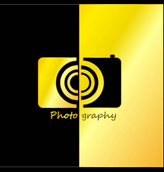 photographer abstract with black and gold vector image