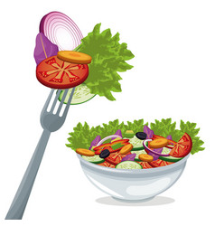 Salad vegetables fresh organic food vector