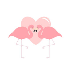 two flamingo couple big pink heart exotic vector image