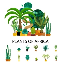 Africa plants Palm trees flowers and green grass vector image