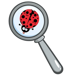 Cartoon magnifying glass vector image