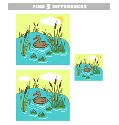 find differences pond duck vector image