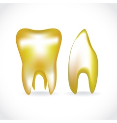 Golden tooth vector image vector image