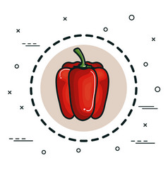 peppers vegetable design vector image