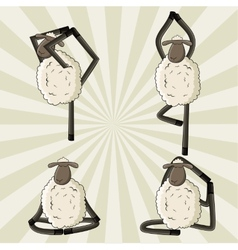 Yoga sheep standing in different poses vector