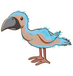 baby parrot bird cartoon on white background vector image