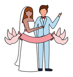 couple wedding pigeons with ribbon vector image