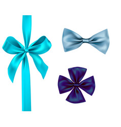 isolated ribbon set vector image