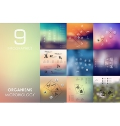 Organisms infographic with unfocused background vector
