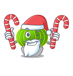 Santa with candy cartoon plants notocactus in the vector