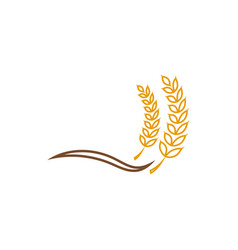 Wheat grain agriculture graphic design template vector