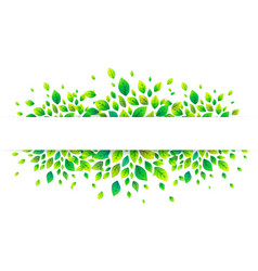 white paper stripe banner on green summer leaves vector image