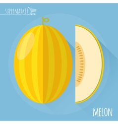 Honey melon icon vector image