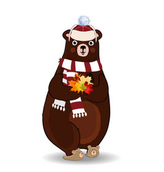 cute autumn bear in white knitted scarf and hat vector image