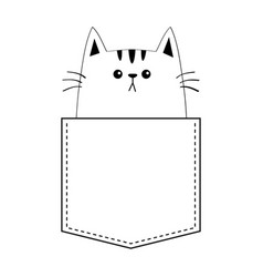 kitten cat in pocket doodle contour linear vector image