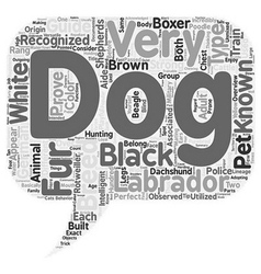 Overview Of Different Breeds Of Dogs text vector