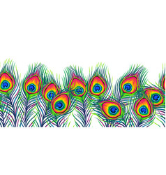 Peacock feathers seamless pattern vector