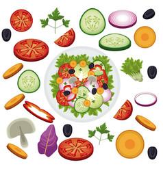 salad vegetables food healthy organic vector image