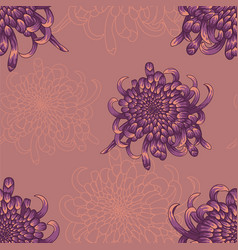 seamless pattern with violet chrysanthemums vector image