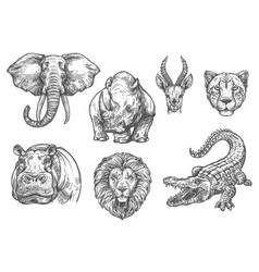 Sketch zoo wild african animals icons vector