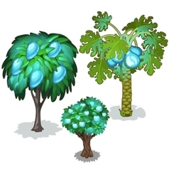 Trees with blue pears apples and pineapples vector