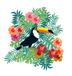 tropical bird toucan on floral background vector image
