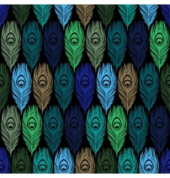Seamless pattern with hand drawn feathers peacock vector image vector image