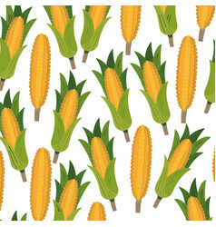 colorful background with pattern of corncobs vector image