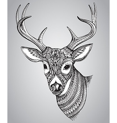 Hand drawn horned deer with high details ornament vector image