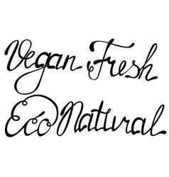 Set of vegan eco natural fresh lettering vector image vector image