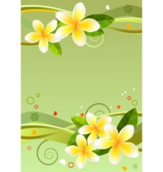 frame with frangipanis vector image vector image