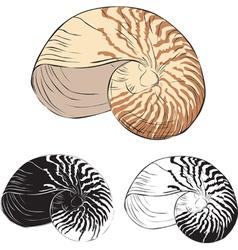 Oceanic isolation shell vector