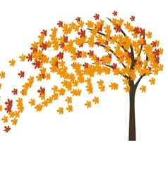 Autumn maple tree in the wind vector image vector image