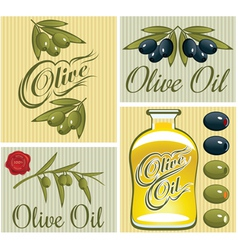 set of design elements for olive oil vector image