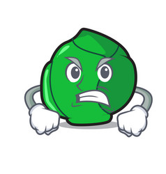 Angry brussels mascot cartoon style vector