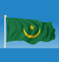 flag of mauritania vector image