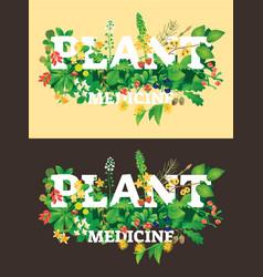 plant medicine beautiful logo vector image
