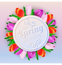 Spring border with tulips vector image vector image