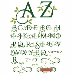 Ornate Swash Alphabet with Leaves vector image vector image